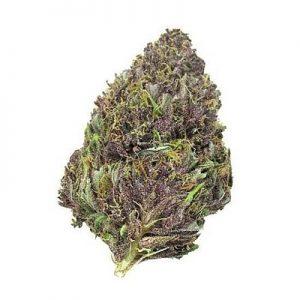 Buy Purple Haze Kush