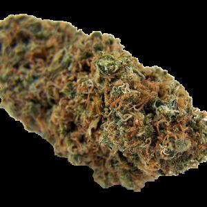 Buy Master Kush Cannabis Strain
